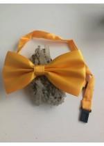 Мъжка папийонка в слънчево жълто